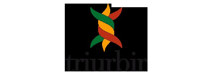 tribur